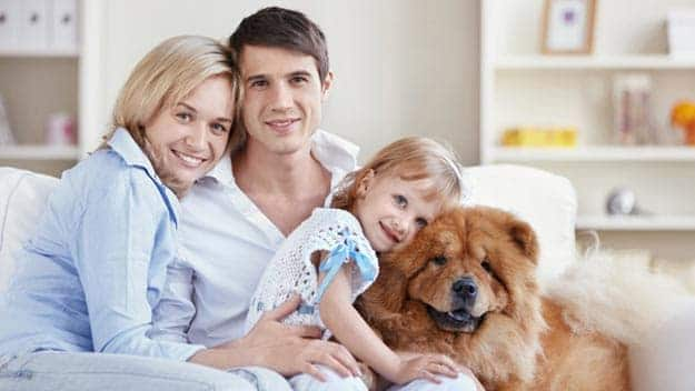 Wills & Trusts dog-young-family Direct Wills Old Malden